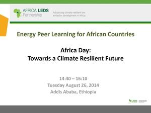 LEDS GP Annual Event Peer Learning Workshop Presentation.pdf