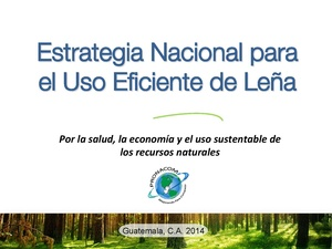 20140820 Maria Isabel Cifuentes- EN para uso de la leña.pdf